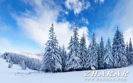 Қазақша диктант: Қазақ тілі | Қыс