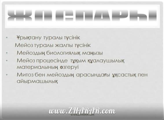Қазақша презентация (слайд): Биология | Мейоз қазақша презентация слайд, Қазақша презентация (слайд): Биология | Мейоз казакша презентация слайд, Қазақша презентация (слайд): Биология | Мейоз презентация слайд на казахском