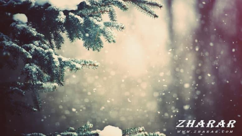 Сочинение: Наступает Новый год! (4 класс) казакша Сочинение: Наступает Новый год! (4 класс) на казахском языке