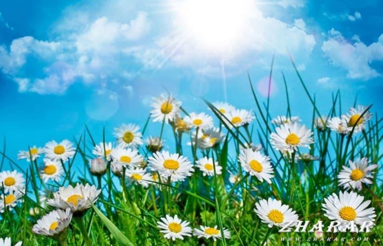 Сочинение: Весна пришла (план + эпиграф) казакша Сочинение: Весна пришла (план + эпиграф) на казахском языке