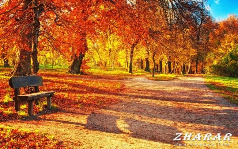 Эссе: Осень (2, 3, 4 класс) казакша Эссе: Осень (2, 3, 4 класс) на казахском языке