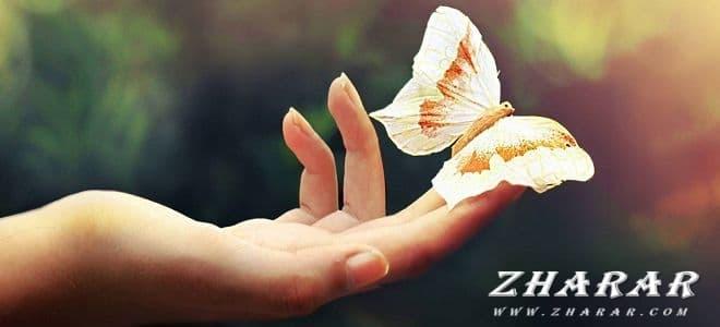 Пословицы  и поговорки: Добро, доброта, человечность казакша Пословицы  и поговорки: Добро, доброта, человечность на казахском языке