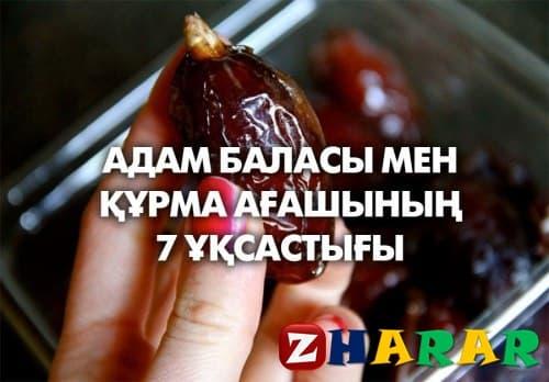 АДАМ БАЛАСЫ МЕН ҚҰРМА АҒАШЫНЫҢ 7 ҰҚСАСТЫҒЫ казакша АДАМ БАЛАСЫ МЕН ҚҰРМА АҒАШЫНЫҢ 7 ҰҚСАСТЫҒЫ на казахском языке