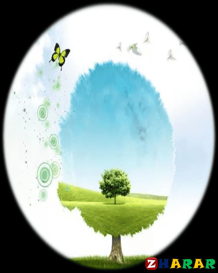 Қазақ тілінен сабақ жоспары: Климаттық өзгеріс және жаһандық жылыну (7 сынып, I тоқсан, 3 бөлім )