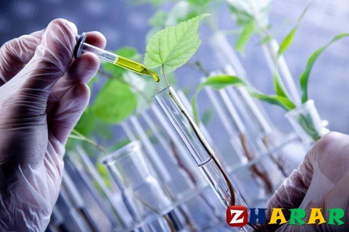 Қазақ тілінен сабақ жоспары: Биотехнология жетістіктері (6 сынып, IV тоқсан )