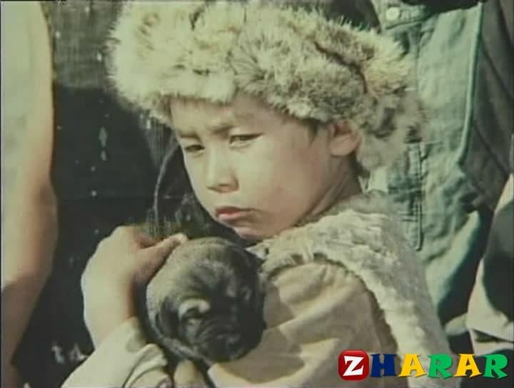 Қазақ әдебиетінен сабақ жоспары: Мұхтар Әуезов «Көксерек» (7 сынып, III тоқсан )