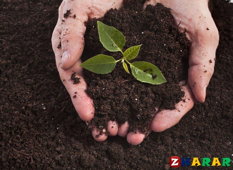 Географиядан сабақ жоспары:  Топырақтың экологиялық проблемалары (7 сынып, IV тоқсан)