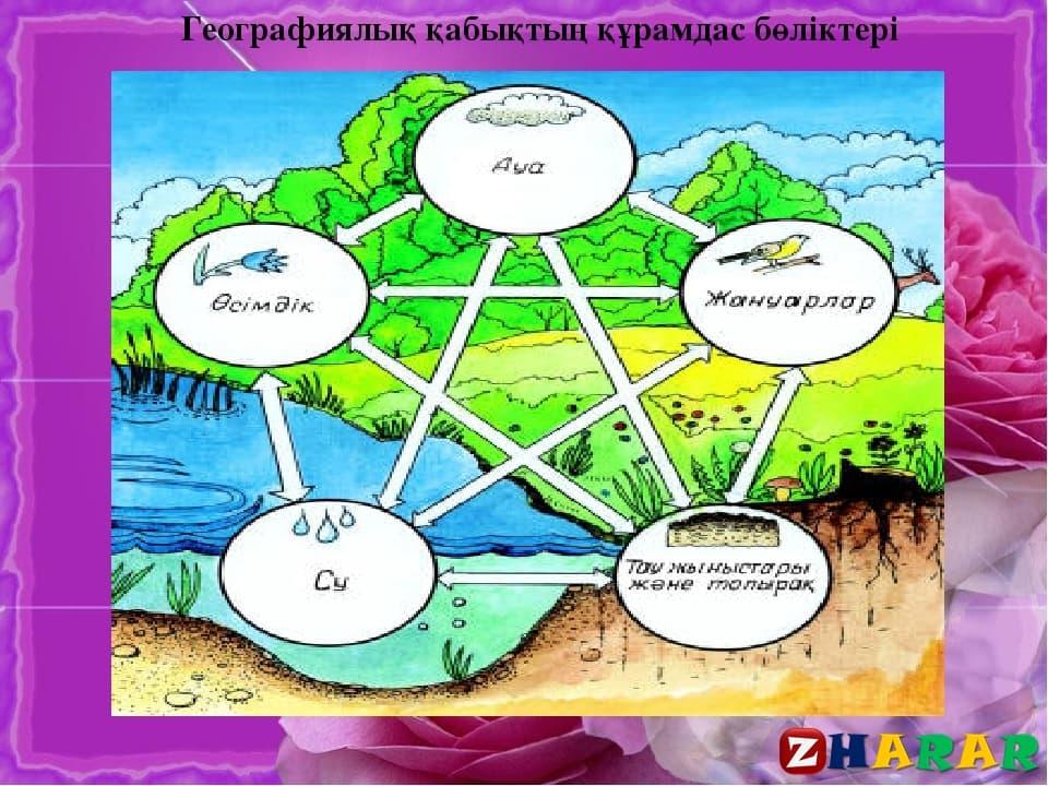 Географиядан сабақ жоспары: Географиялық қабықтың құрамы мен құрылысы №1 (8 сынып, III тоқсан)